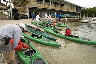 kayakers-preparing-for-kayaking.jpg